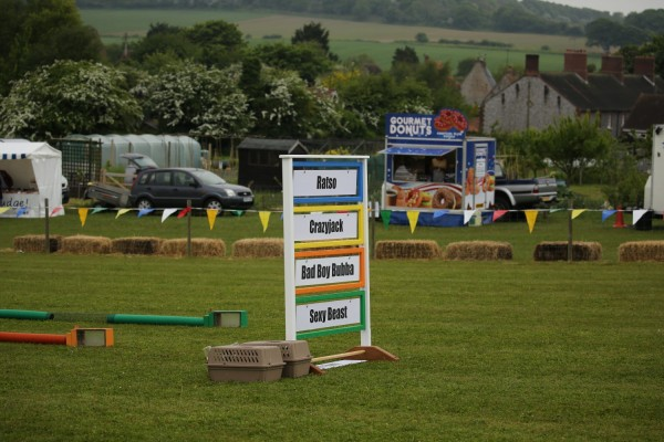 Ferret Racing Country Show
