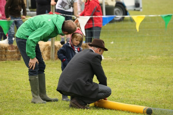 Ferret Racing - North Norfolk Country Fair