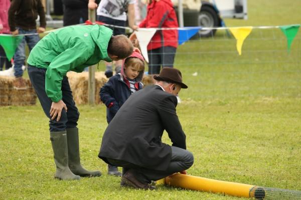Ferret Racing - North Norfolk Country Fair