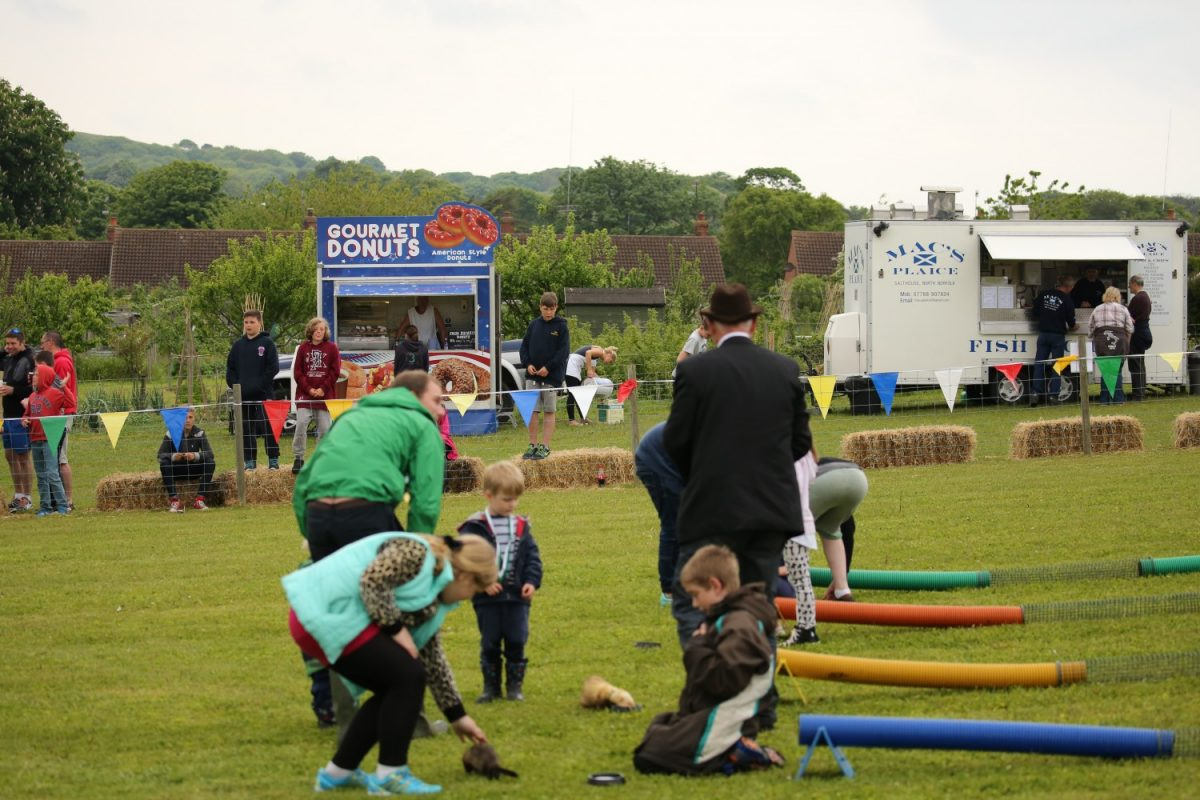 Ferret Racing at Country Show